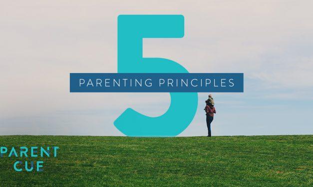 5 Parenting Principles