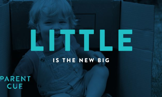 Little Is The New Big