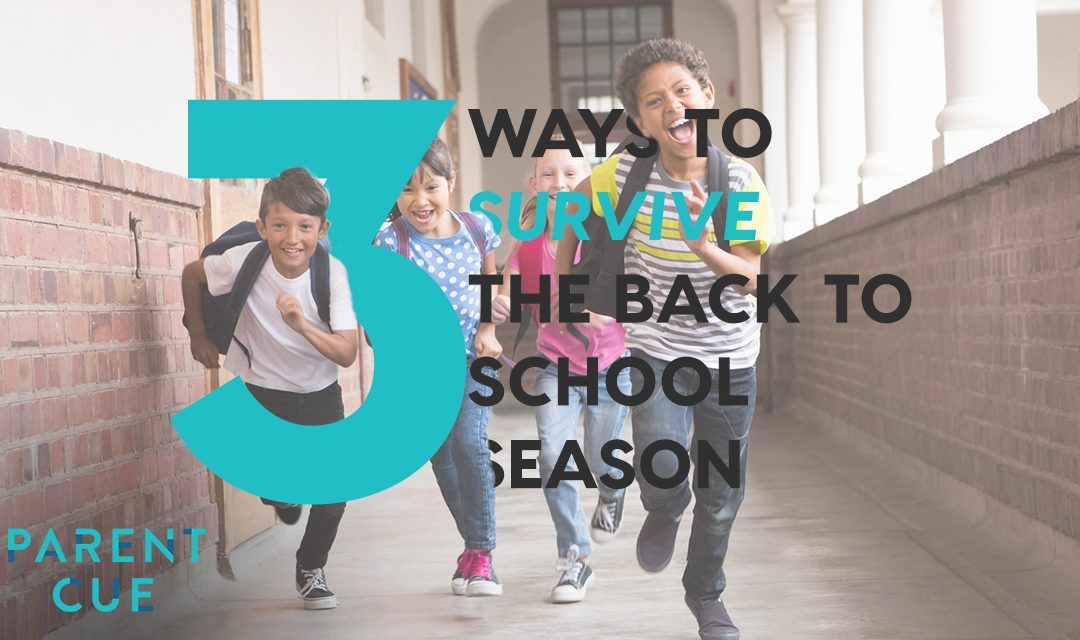 3 Ways to Survive the Back to School Season